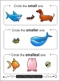 Circle the smallest animal